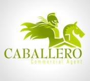 Caballero Martinez - Imagen corporativa, diseño página web y diseño gráfico
