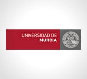 Universidad de Murcia - DVD interactivo